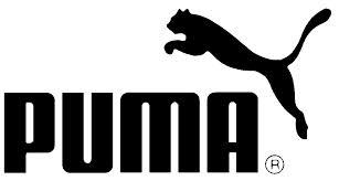 puma-cricket.jpg